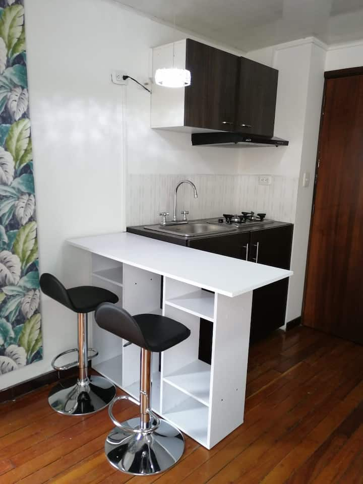 Apto 1. apartaestudio tipo loft un solo ambiente.