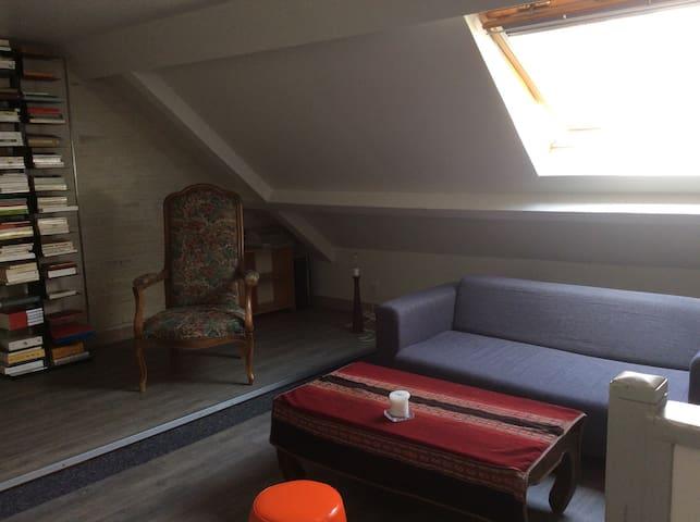 Cosy apartment in Villejuif - Villejuif - Loft