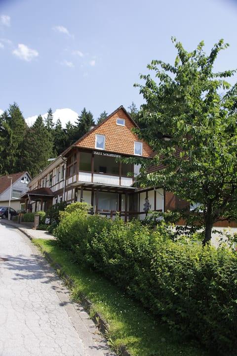 Haus Waldfrieden Apartement 1