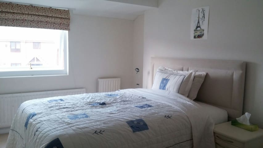 Comfy queen bed double room in Rochester