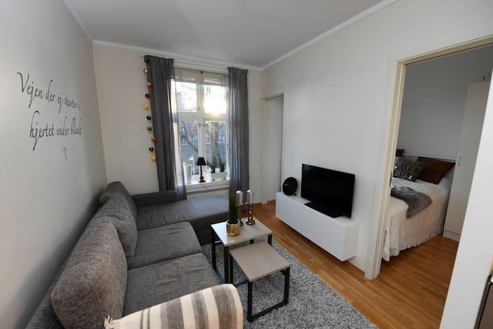 Super central cozy apartment in Oslo