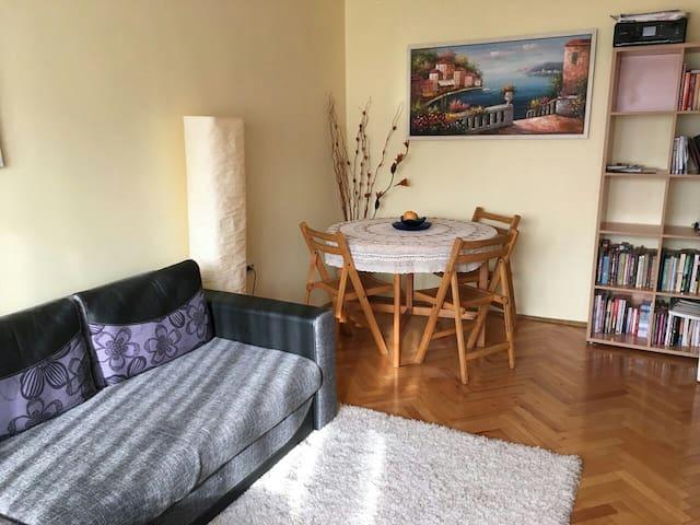 Sunny & comfy - living/bedroom