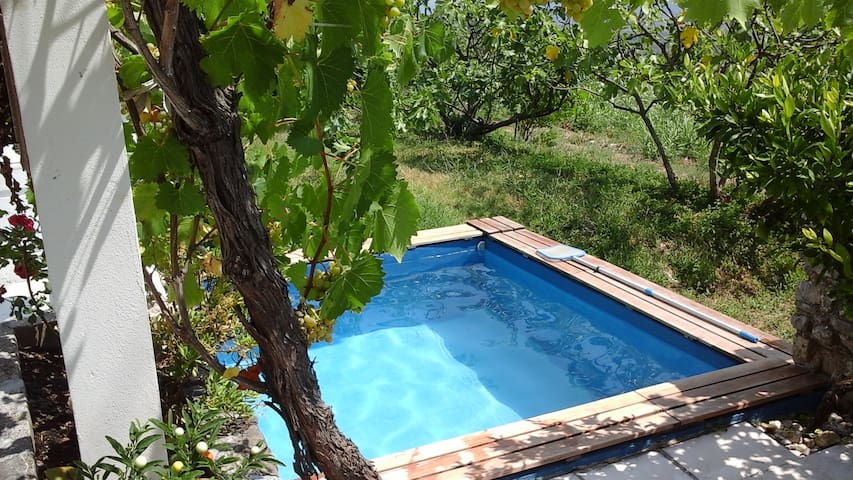 Country house & pool only for you - Dubrovnik - Talo
