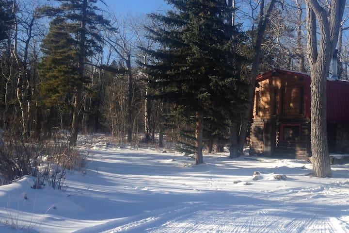 The front door of our cabin.