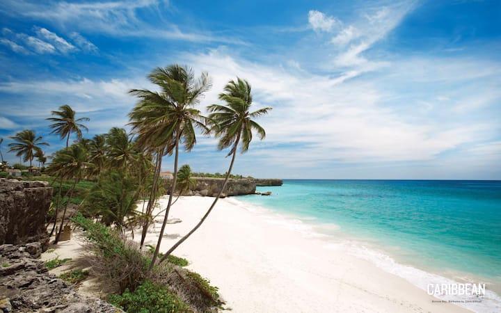 Seafront Caribbean Villa, relax in hidden paradise
