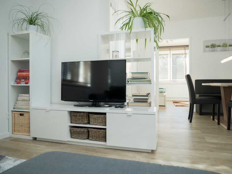 The sideboard with a TV, books about Austria and a few green plants