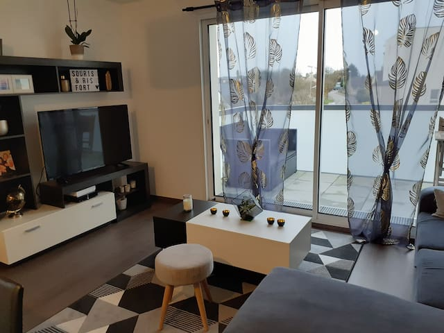 Appartement neuf lumineux 50m2
