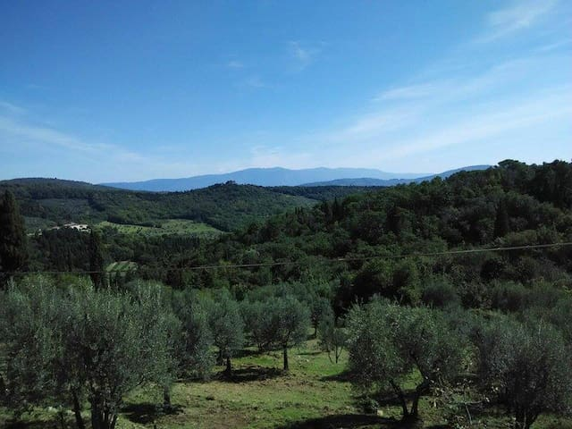 Amazingly located apartment close to Florence - Fiesole - Lejlighed