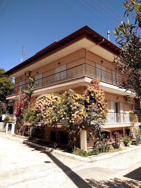 Eri's house