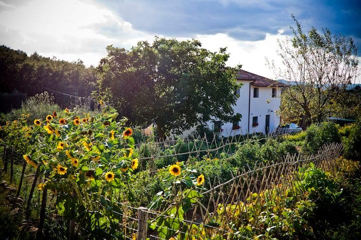 Appartamento con giardino, azienda biologica