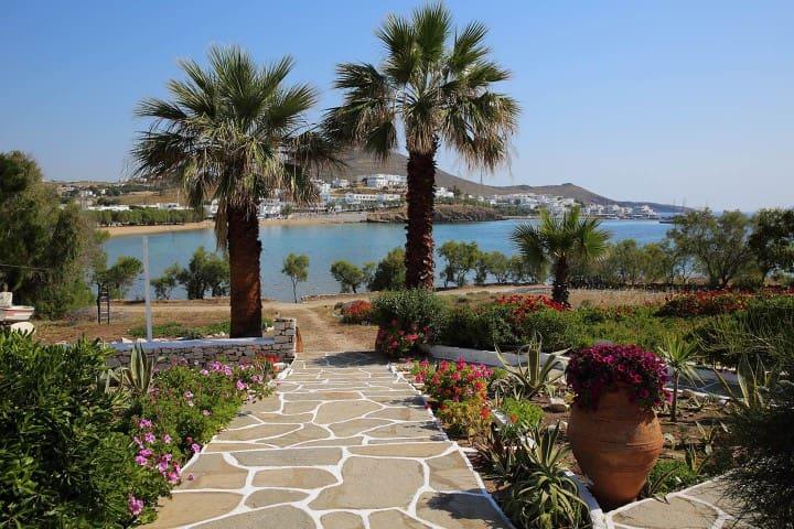 Aegean view, sea front apartment - Piso Livadi - Apartemen