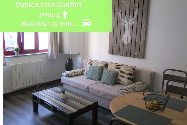 Duplex /Beauval & châteaux