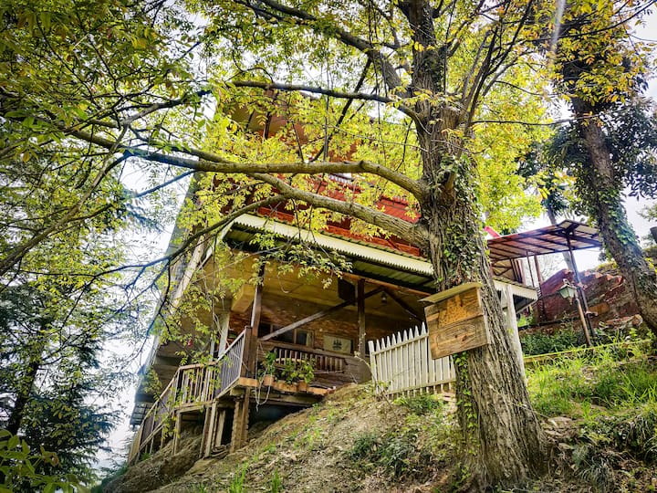 Royal Swiss Cottage- luxury Chalet in the woods