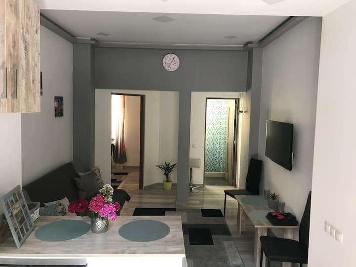 Andres Central Apartment