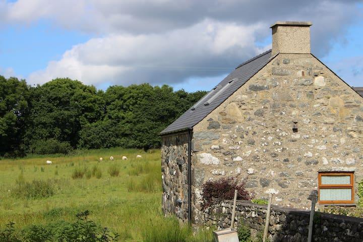 Cegin Foch @ Cefn Coed Cottages - Chwilog - Leilighet
