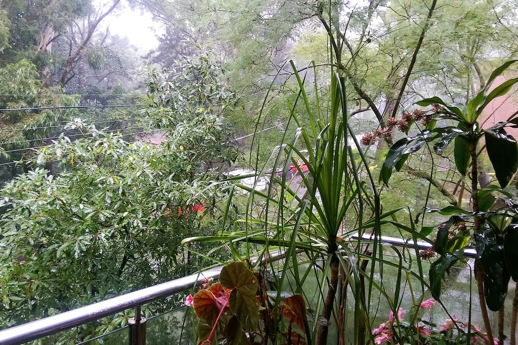 Private balcony overlooking bushland