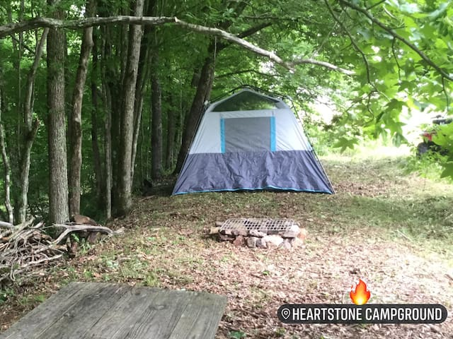 REAL Camping In The Woods - Tent Site 1 Near Creek