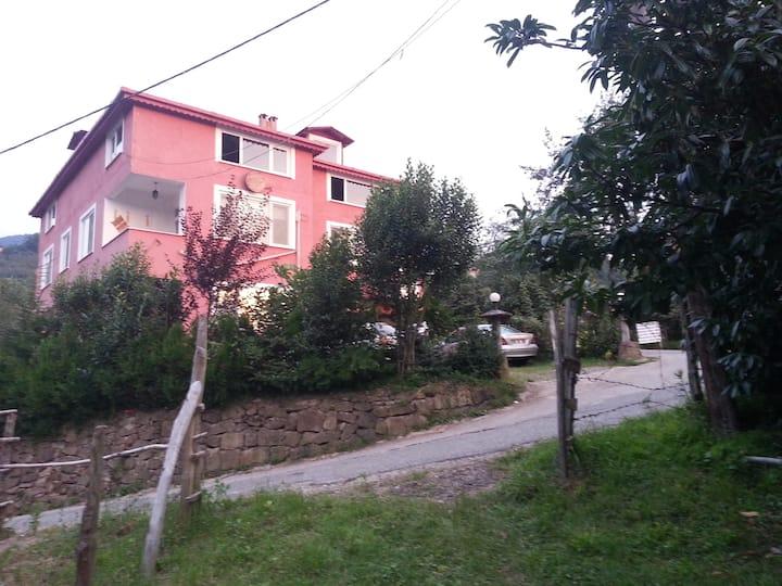 Ekolojik güney köy