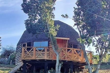 Cabañas Domos Antukuyen, Isla Huapi del Lago Ranco - Futrono - Alojamento ecológico