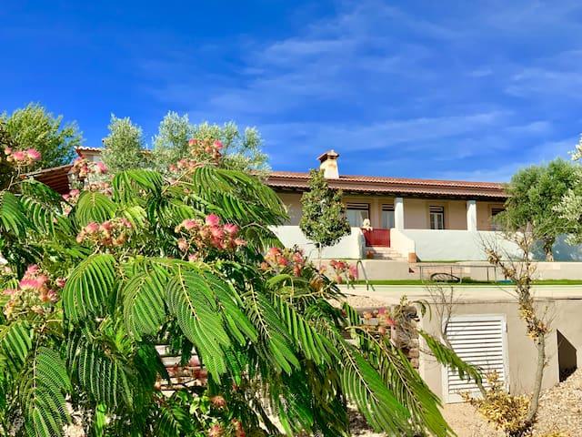 Country House Monte das Oliveiras