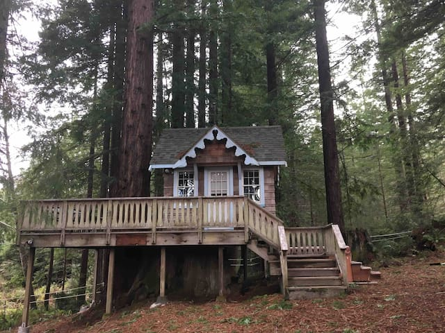 Tiny Cottage in the Redwoods