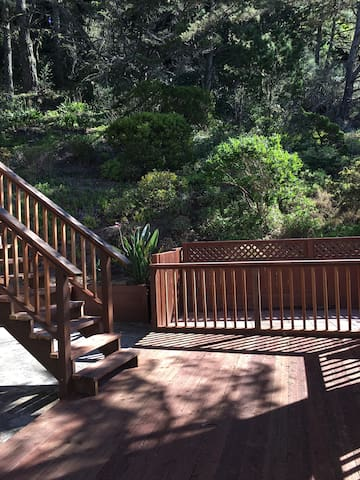 Deck in tranquil private backyard