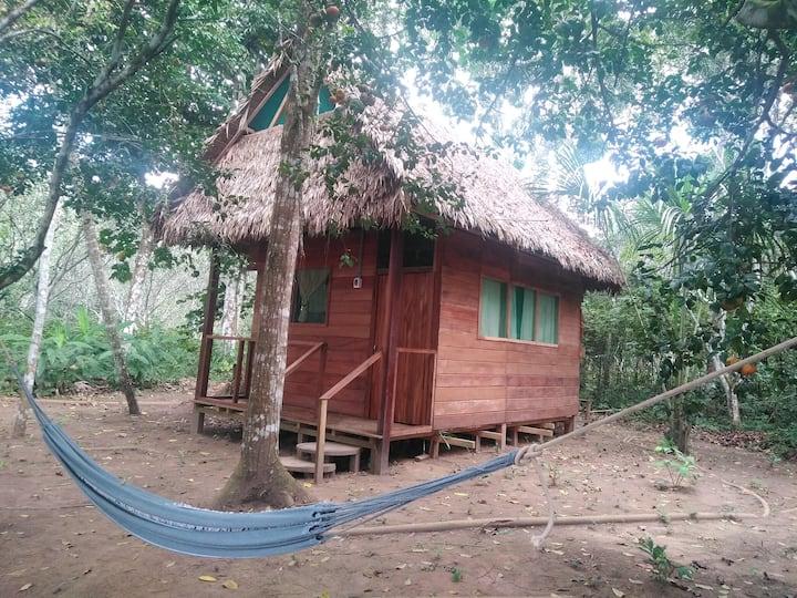 Majachos house
