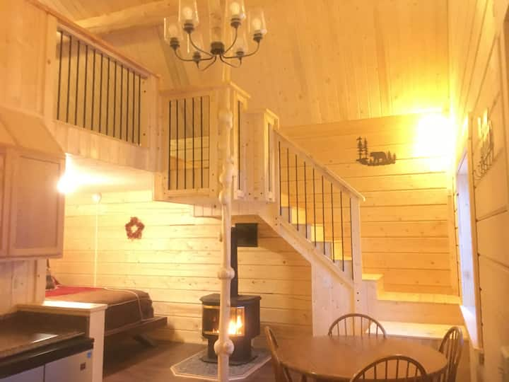 Bearberry Lodge - Custom cabin in Tok, Alaska
