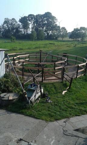 Pferde Laufmühle