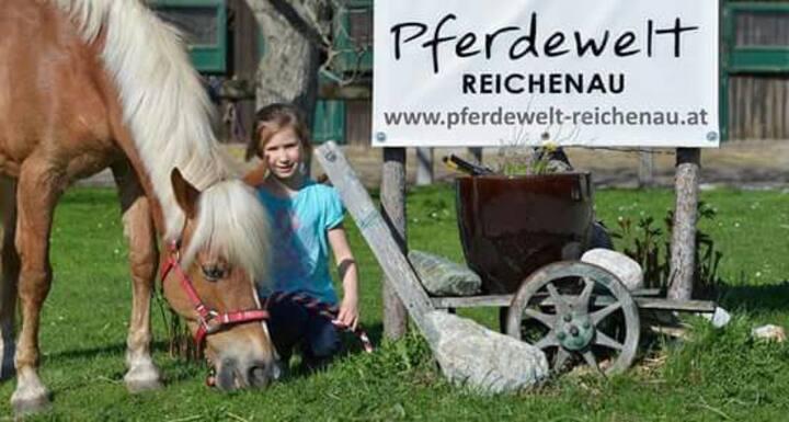 Wohnen in der Pferdewelt Reichenau
