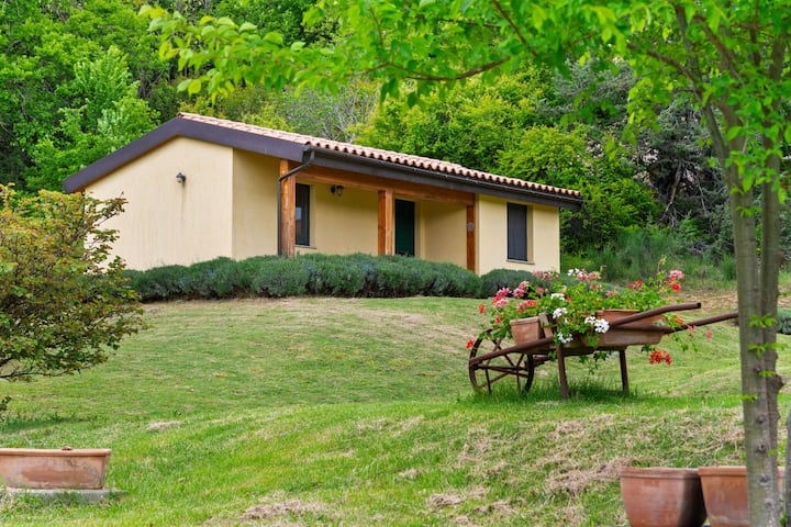 Alluring Cottage in San Ginesio with Swimming Pool