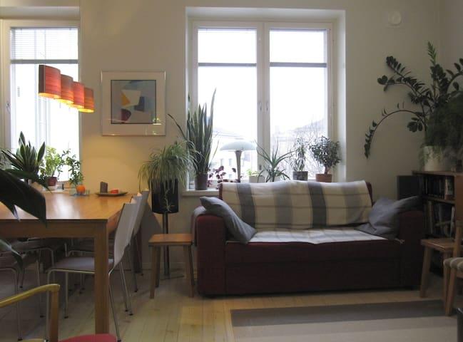 Spacious 1-bedroom apartment 61 m2