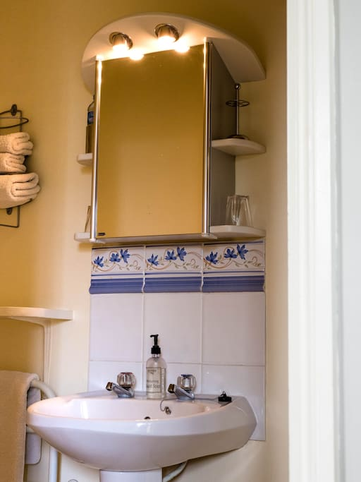 Cotswolds Bed and Breakfast - Tower ensuite shower room