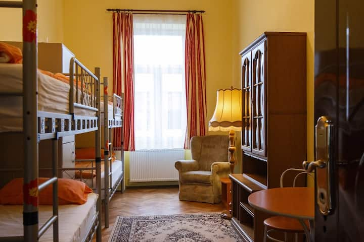 4 Bed Dorm in Transylvania Hostel