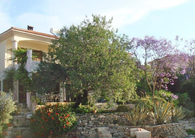 Spacious Villa Meraki, Pissouri - Pissouri
