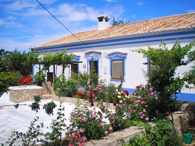 Villa Woody by GalanteVasques - Pêra - Talo