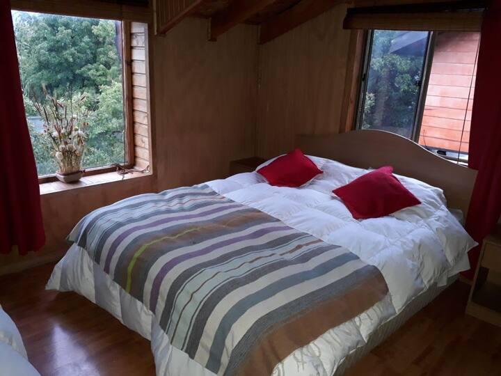 Cabañas Los Maitenes, Patagonia Agreste