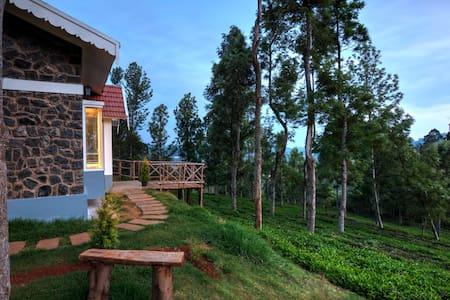 Blue Ridge Stone Cottage in Ketti Valley Lower - Ketti - Villa