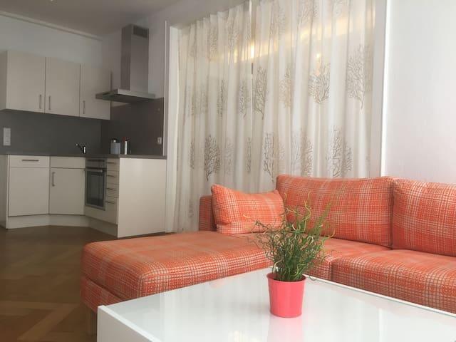 Ferienwohnungen Spiegel Cramergasse, (Lindau am Bodensee), Ferienwohnung Chill Out, 45 qm, 1 Wohn-/Schlafzimmer, max. 2 Personen