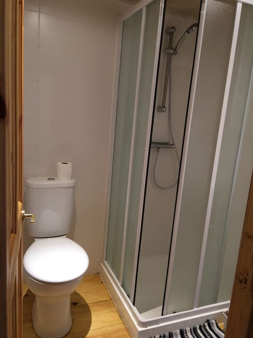 Private bathroom area for use just by you.  This includes toilet, shower and small basin.