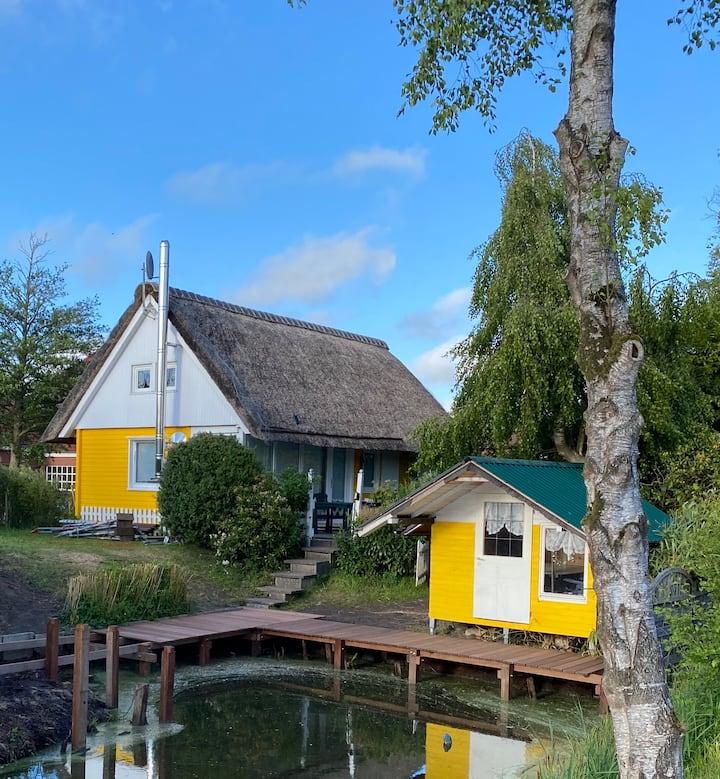 Ferienhaus Butterblume Großes Meer Küste Nordsee