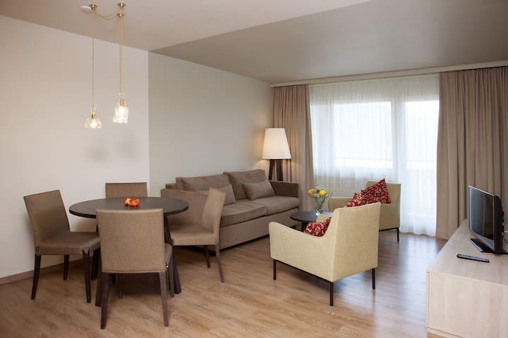 2 Zimmer Ferienwohnung 'la glina' - Disentis/Mustér