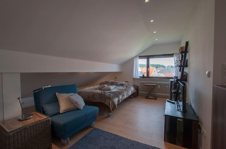 Charming apartment near Darmstadt and Frankfurt