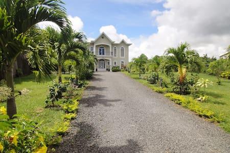 Spacieuse villa privée, grand jardin et piscine - Grand Gaube - Вилла