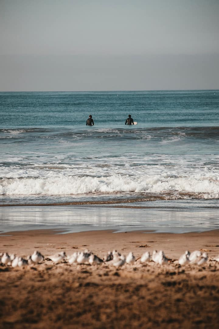 Choosing a wave