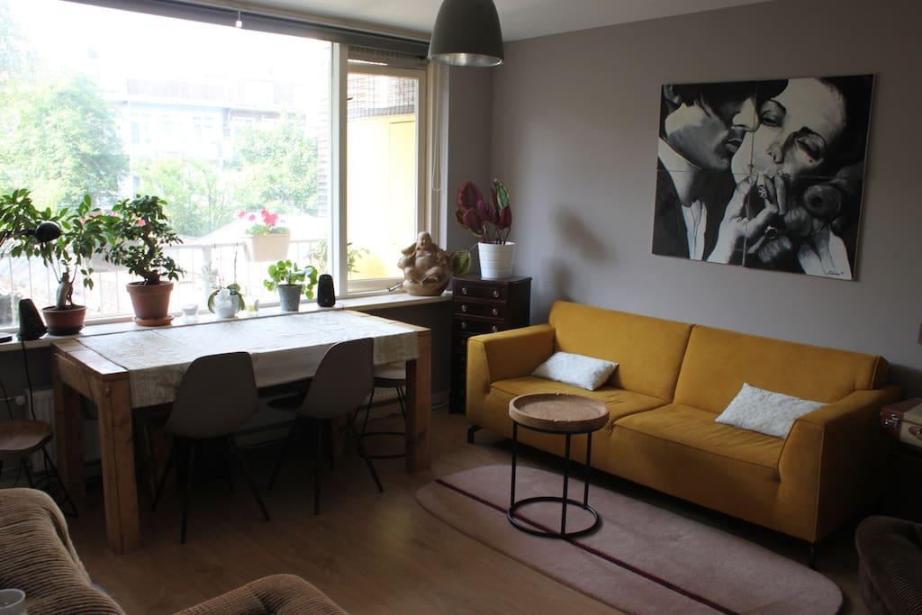 Big living room with plants