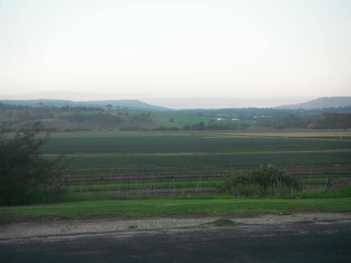 Mitchell views