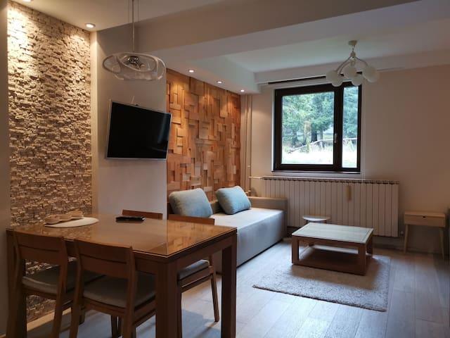 Cozy mountain studio in centar (Vila Nikola)