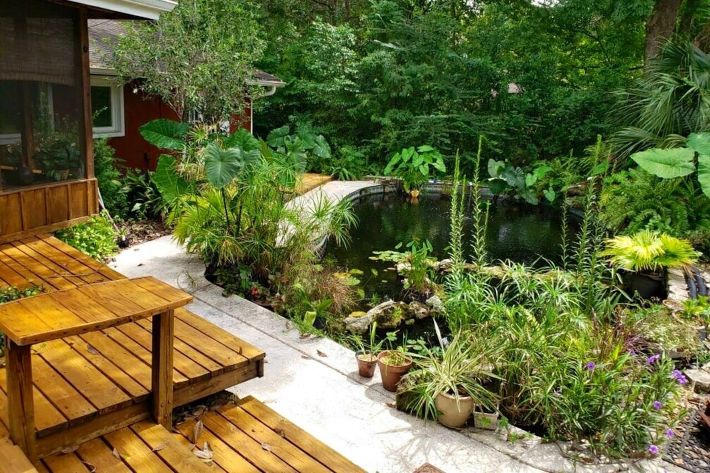 A surprising lovely, relaxing water feature awaits you by a large deck for your Yoga, Meditation,  Grilling or just relaxing after a full day.