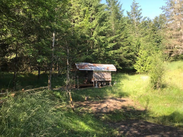 Sheepherder's Wagon #1 (across the pond)
